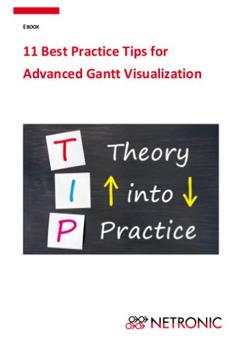 Ebook-11 Best Practice Tips for Advanced Gantt Visualization_Cover.png