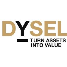 Logo - dysel